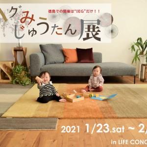 ハグみじゅうたん展 in LIFE CONCEPT IEG 2021.1/23~2/7