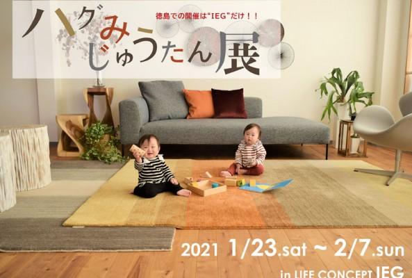 ハグみじゅうたん展 in LIFE CONCEPT IEG 2021.1/23~2/7のイメージ